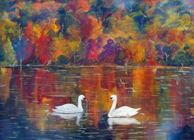 Swan in Fall colour